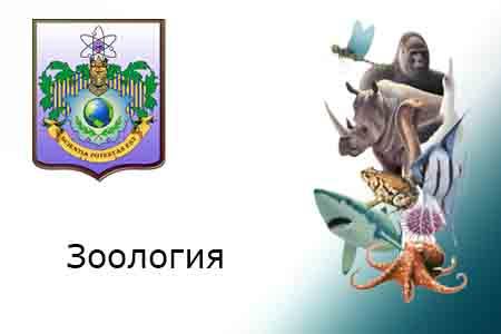 Зоология (1 курс)